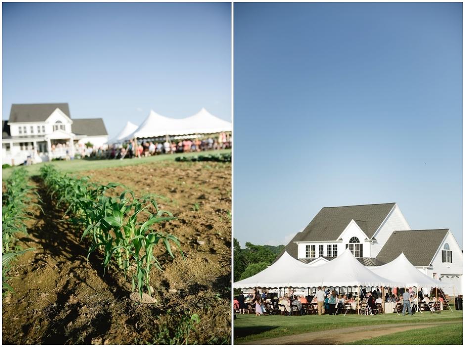 Stanardsville Wedding- Dustin and Elizabeth-5211.jpg