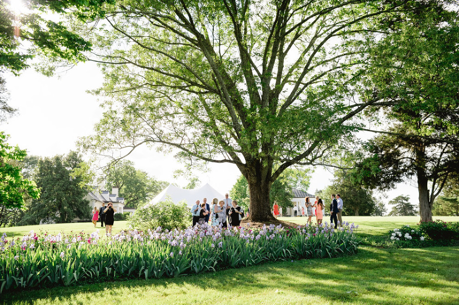 Blenheim and UVA Chapel Wedding- Becca and Declan-2031